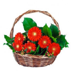 Basket With Gerbera - 1