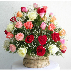 Round Color Roses Arrangement (24 ROSES)