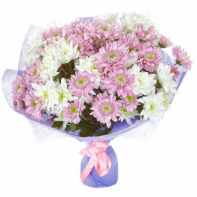 Bouquet of Crysanthemums - White and pink