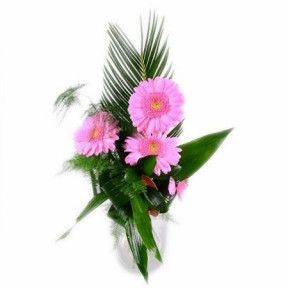 Bouquet of 3 Pink Gerberas