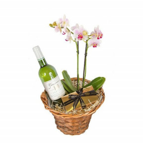 Orchid and white wine