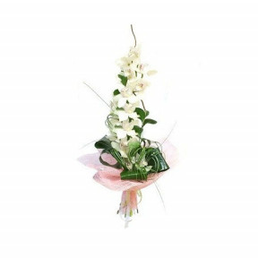 Bouquet of White Cymbidium Orchid
