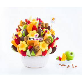 Fruit Carnival (Small)