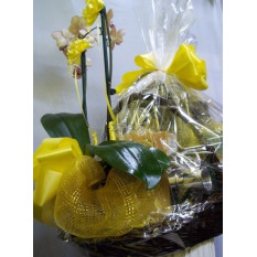 Personalized Basket with Orchid Plant