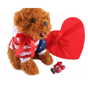 12 inch Dog cuddly with a heart box of 25 milk chocolate hearts
